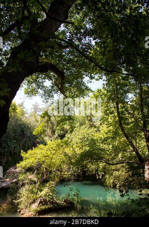 Vue sur la cascade et la forêt. Parc de chutes de Kursunlu, Antalya, Turquie. Banque D'Images