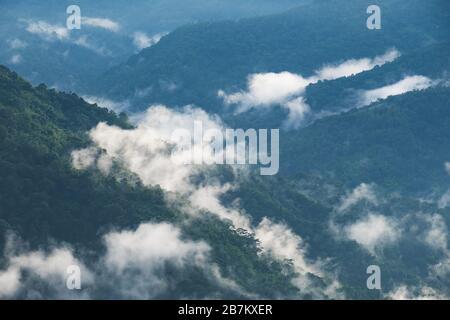 Paysage image des collines verdoyantes de la forêt tropicale dans une journée de brume avec fond bleu ciel Banque D'Images