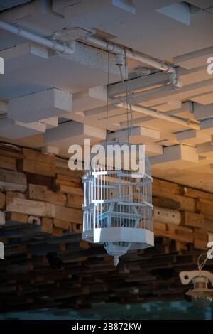 Abat-jour en cage d'oiseaux en bois peint blanc. Gros plan de cage à oiseaux transformé en plafonnier avec lanterne à l'intérieur. Chandelier suspendu inhabituel Banque D'Images
