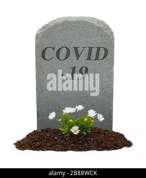 COVID-19 Pierre de tête et fleurs isolées sur fond blanc. Banque D'Images