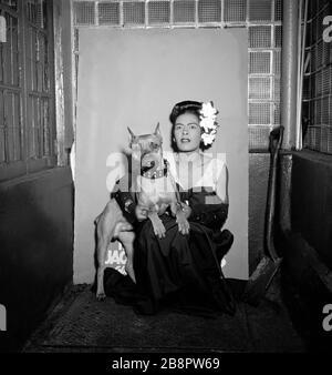NEW YORK, NY - FÉVRIER 1947: La chanteuse américaine de jazz Billie Holiday (1915-1959) pose un portrait avec son chien Monsieur vers février 1947 au club Downbeat de New York, New York. Crédit:William Gottlieb / Rock négatifs/ MediaPunch Banque D'Images