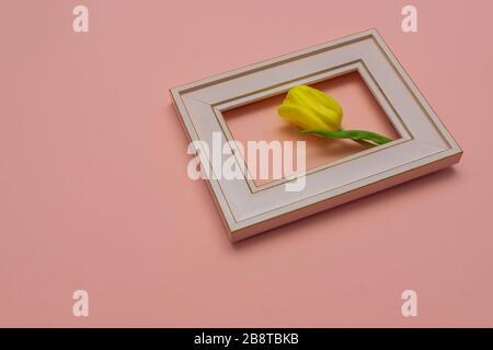 Magnifique cadre photo rose tulipe fleuri, fond pêche. Concept de cadre de printemps et de Pâques. Pose plate. Espace vide. Banque D'Images