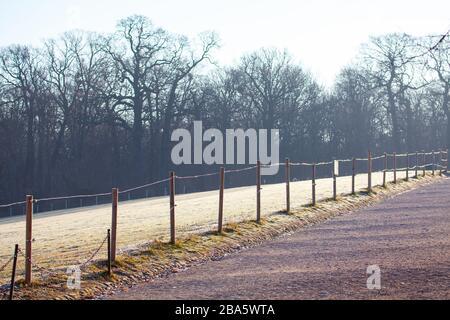 clôture dans le parc d'hiver , herbe couverte de rime