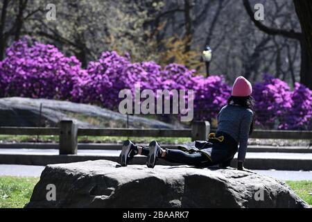 New York City, États-Unis. 26 mars 2020. Une femme fait du yoga sur un rocher isolé dans Central Park, à New York, NY, le 26 mars 2020. L'État de New York voit le nombre le plus élevé de cas aux États-Unis, avec (à partir de cet article) plus de 37 000 cas positifs testés de COVID-19 et plus de 21 000 cas à New York. (Anthony Behar/Sipa USA) crédit: SIPA USA/Alay Live News Banque D'Images