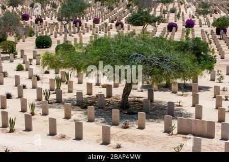 La guerre du Commonwealth tombe au cimetière de guerre d'El Alamein dans le nord de l'Égypte. Le cimetière contient les tombes des deux soldats de l'Empire britannique de la seconde Guerre mondiale.
