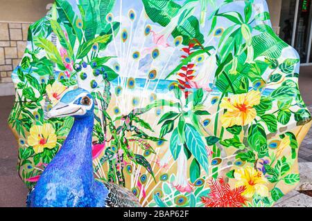 Floride, Floride, Sud, Miami, Coconut Grove, paon, art, art, art, fibre de verre, peint, floral, plantes, botanique, visite touristique les visiteurs voyagent Banque D'Images