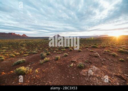 La lumière du matin s'élève au-dessus du désert arbuste et de la roche rouge des Canyonlands