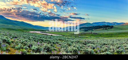 Le soleil s'élève sur la vallée de Lamar, près de l'entrée nord-est du parc national de Yellowstone, dans le Wyoming.