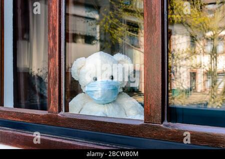 Joli ours triste en peluche avec masque médical de protection en quarantaine pour Covid-19 regarde hors de la fenêtre. Restez à la maison. Maladie, isolement du patient et