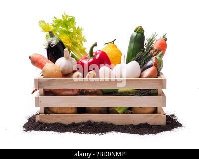 Légumes biologiques dans une boîte rustique en bois et un topsol isolé sur fond blanc Banque D'Images