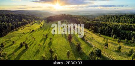 Paysage aérien panorama après le lever du soleil: Magnifique paysage avec le soleil, arbres sur les prairies jetant de longues ombres, entouré de forêts