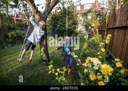 Deux jeunes frères âgés de 6 et 9 ans jouant sur une échelle de corde et de l'oscillation de corde dans leur jardin arrière, Londres, Angleterre, Royaume-Uni Banque D'Images