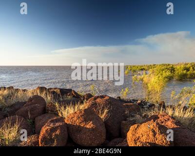 Mangroves sur le détroit de King, Derby, les Kimberley, Australie occidentale Banque D'Images