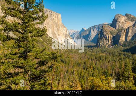 Point de vue sur le tunnel dans le parc national de Yosemite avec El Capitan, Cathedral Rocks et le Half Dome en arrière-plan