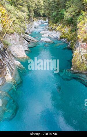 Piscines bleues du Haast Pass, parc national du Mont Aspiring, île du Sud, Nouvelle-Zélande,