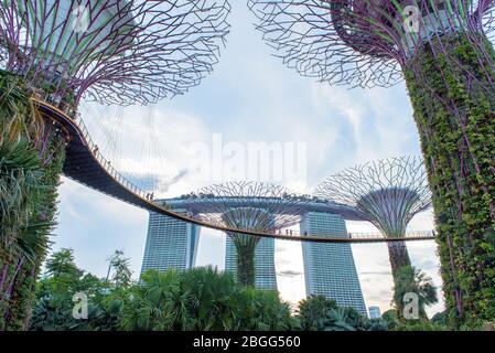 SINGAPOUR - 19 AVRIL 2018 : vue futuriste de l'incroyable illumination au jardin près de la baie le 19 avril 2018 à Singapour. Spectacle de lumière de nuit à Supertree