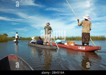 Les touristes étant polés cependant dans mokoros (dugout canoes), le Delta d'Okavango, Botswana, Afrique