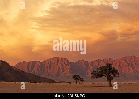 Namib désert paysage au coucher du soleil avec des montagnes accidentées et des nuages dramatiques, Namibie