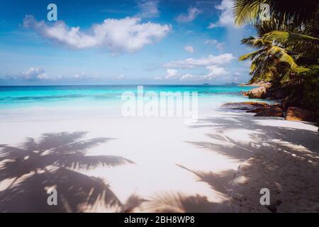Tropical Parfait idyllique plage de rêve. Sable blanc, eau cristalline, summertime locations Seychelles.