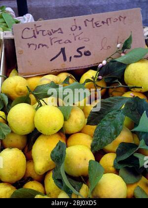 Piles de citrons frais de l'arbre avec feuilles et fleurs à vendre sur le marché couvert de Menton, au sud de la France -