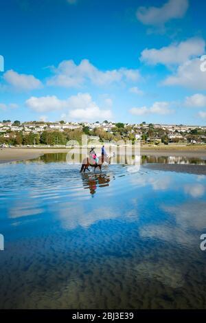 Promenades à cheval à marée basse sur l'estuaire Gannel à Newquay en Cornouailles.