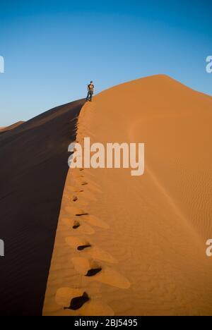 Un seul homme qui monte une dune de sable au coucher du soleil dans le désert de Namide à Sossusvlei, Namibie, Afrique. Format portrait. Banque D'Images