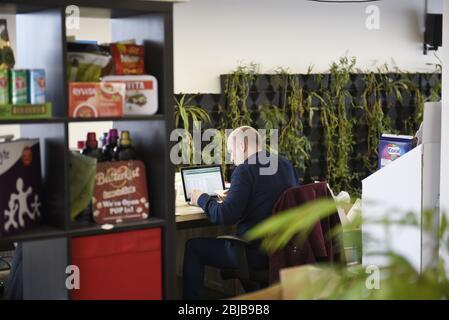 Un bureau branché pour un bureau chaud avec des plantes vertes. Concept ouvert de travail moderne. Banque D'Images