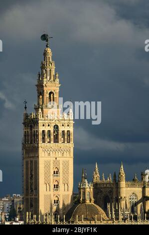 VUE SUR LA TOUR GIRALDA ET LA CATHÉDRALE DE SÉVILLE, SITE CLASSÉ AU PATRIMOINE MONDIAL DE L'UNESCO, SÉVILLE, ANDALOUSIE, ESPAGNE Banque D'Images