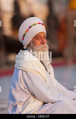 Inde, État du Pendjab, Amritsar, Harmandir Sahib, portrait d'un Sikh dans la méditation, lieu Saint du sikhisme Banque D'Images