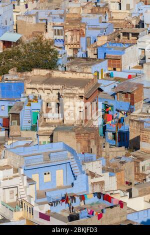 Inde, Rajasthan, Jodhpur, Pachetia Hill, vue surélevée sur les toits de la ville bleue