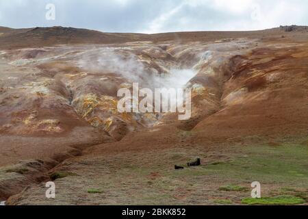 Fuite de vapeur d'une longue fissure (fumarole) dans la zone volcanique de Krafla près de Mývatn, en Islande.