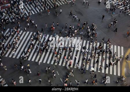 Japon, île de Honshu, région de Kanto, Tokyo, quartier de Shibuya, carrefour de Shibuya