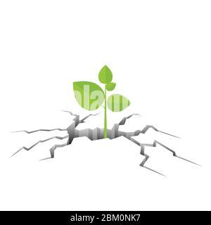 Plante verte provenant de l'illustration vectorielle de terre fissurée Banque D'Images