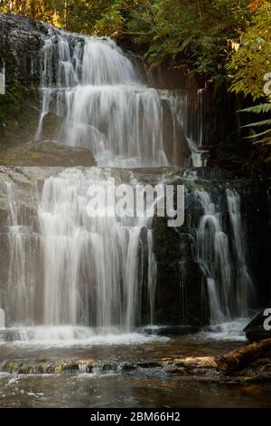 Purakuunui Falls, Owaka, Nouvelle-Zélande