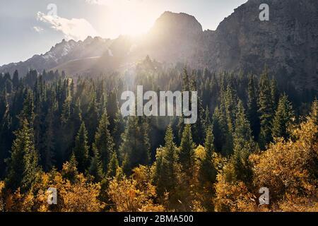 Magnifique paysage de la vallée de montagne avec forêt d'automne au coucher du soleil au Kazakhstan