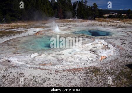 Eau bouillante dans des bassins cristallins à Yellowstone