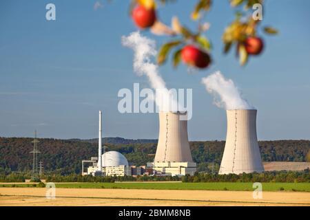 Quelques pommes rouges accrochées « au-dessus » des tours de refroidissement d'une centrale nucléaire. Banque D'Images