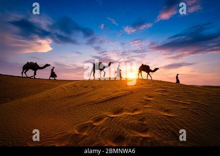 Caméléers indiens chauffeur de chameau avec silhouettes de chameau dans les dunes au coucher du soleil. Jaisalmer, Rajasthan, Inde