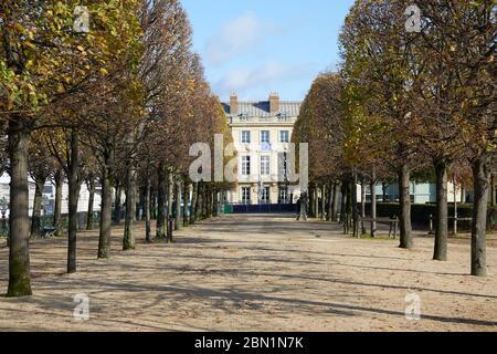 PARIS - 7 NOVEMBRE 2019 : jardin des Tuileries avec des lignes d'arbres en automne ensoleillé à Paris Banque D'Images