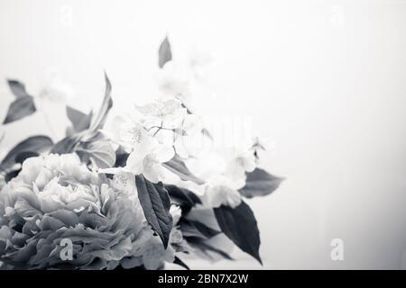 Le fond des fleurs printanières est noir et blanc, avec pivoine (paeonia) et orange mock (philadelphus). Papier peint gros plan bouquet BW avec espace de copie sur ri Banque D'Images