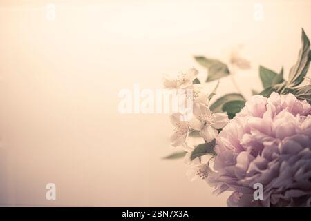 Printemps fleurs fond en rose filtre vintage, avec pivoine (paeonia) et orange mock (philadelphus). Fond d'écran gros plan bouquet BW avec espace de copie o Banque D'Images