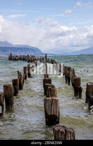 Poteaux en bois d'un ancien quai, Puerto Natales, Patagonie, Chili, Cerro Monumento Moore en arrière-plan. Banque D'Images