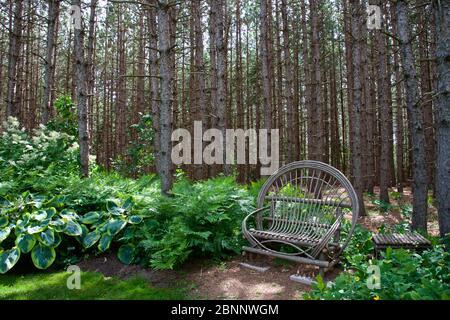 Paysage - le paysage de la scène de jardin avec bois et chaise en rotin Banque D'Images