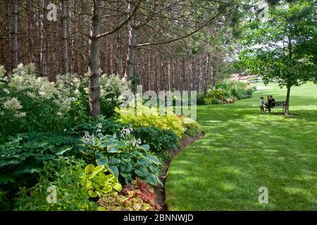 Jardin paysager naturel avec bois et banc de parc Banque D'Images