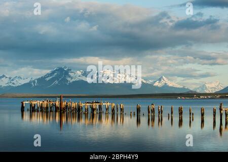 Cormorans se faisant perçant sur les vieux piliers de la jetée en ruines à Puerto Natales, Patagonie, Chili, avec Torres del Paine au loin