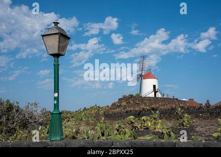 Winmill à Jardín de Cactus, Guatiza, Lanzarote, îles Canaries Banque D'Images