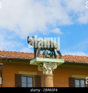 Capitoline Wolf, sculpture sur la Piazza del Duomo, Pise, Italie Banque D'Images
