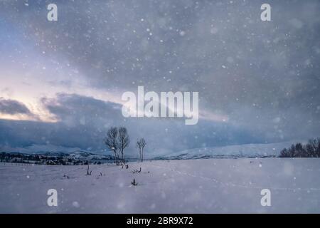 Neige sur la montagne paysage d'hiver avec la région de Tromso, Norvège du Nord, Banque D'Images