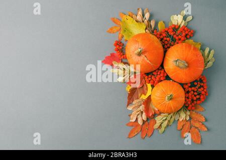 Cadre d'automne avec feuilles sèches, composition naturelle et décorative de citrouilles sur fond gris, Halloween saisonnière, fête d'action de grâce concept d'automne, c