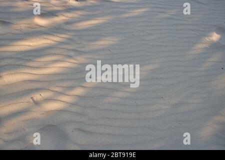 Cette photo unique montre la structure de sable sur une plage en Thaïlande avec la lumière du soleil et l'ombre. La photo a été prise à midi. Banque D'Images